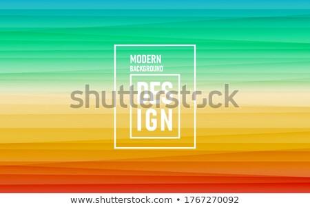 Visitekaartje vector sjablonen geen gradiënten effecten Stockfoto © tuulijumala
