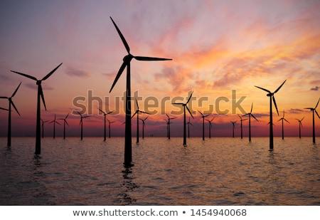 Farma wiatrowa Błękitne niebo Chmura trawy charakter Zdjęcia stock © ajlber