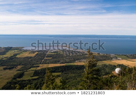 Sea and Forest from St-Joseph mountain view  Stock photo © aetb