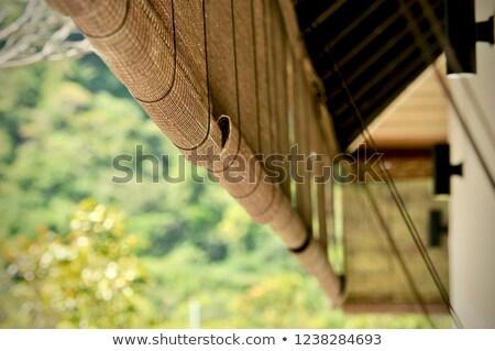 Bambú cortina vertical resumen naturaleza selva Foto stock © nelsonart