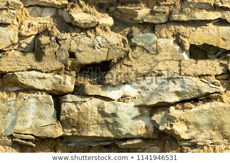 Wall Laid Out by a Sandstone. Seamless Texture. Stock photo © tashatuvango