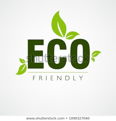 Környezetbarát poszter textúra természet háttér művészet Stock fotó © adamson