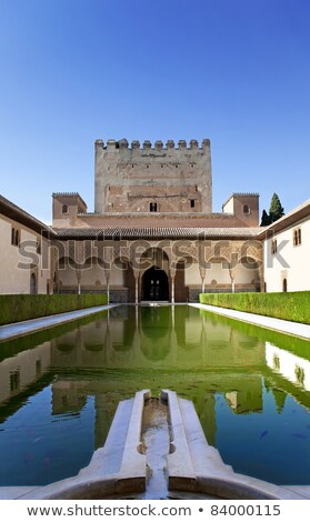 Alhambra Mosaic Fountain Garden Granada Andalusia Spain Stock photo © billperry