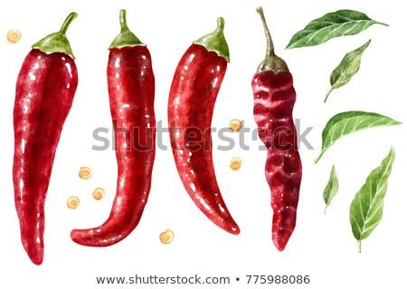 fresche · cibo · vegetariano · rosso · pepe · bianco · superficie - foto d'archivio © rob_stark