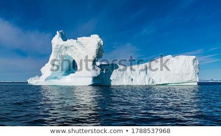 Olvad jéghegy zavart pingvin áll darab Stock fotó © kovacevic