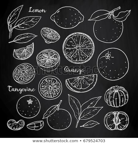 limão · suco · vetor · comida · laranja - foto stock © rastudio