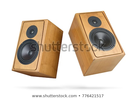 Audio speaker isolated on white Stock photo © ozaiachin