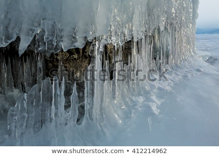 field of ice stalagmites in the cave stock photo © vapi