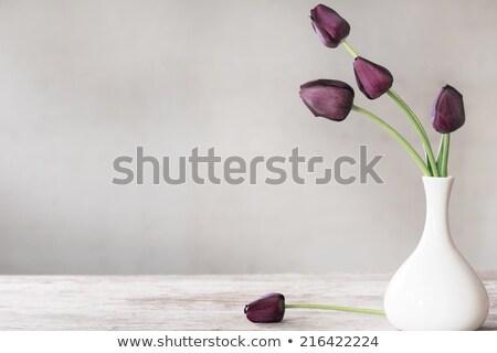 花瓶 花束 紫色 赤 チューリップ アイコン ストックフォト © compuinfoto