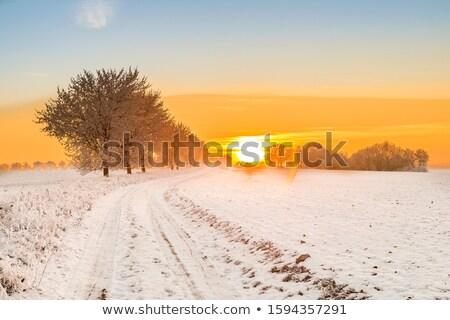 tél · tájkép · naplemente · út · hó · égbolt - stock fotó © meinzahn