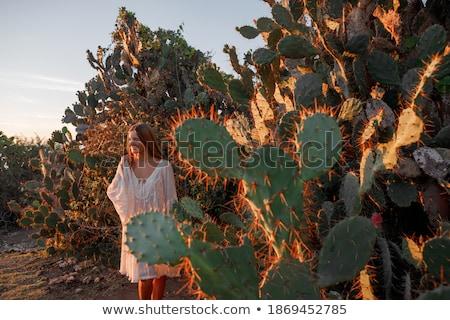 Foto stock: Jóvenes · mujer · hermosa · occidental · estilo · mujer · atractiva · aislado