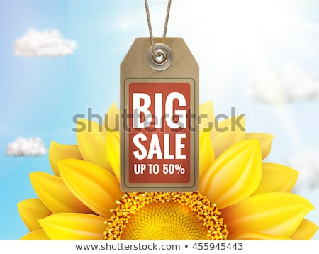 sunflower with blue sky   autumn sale eps 10 stock photo © beholdereye