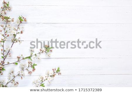 花 木製 白い花 古い 木製のテーブル 春 ストックフォト © Kidza