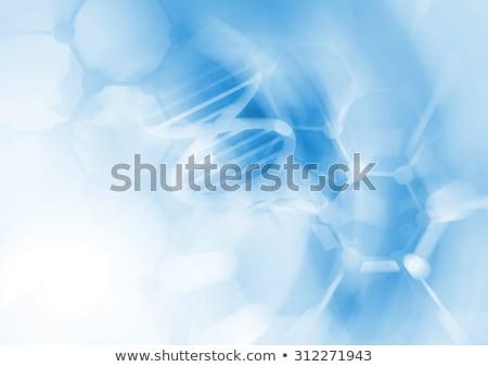 Laboratórium bio organikus modern üveg gyógyszer Stock fotó © JanPietruszka
