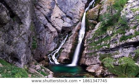 озеро Словения воды лес пейзаж Сток-фото © stevanovicigor