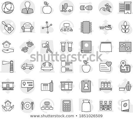 Astrology house icons outline design illustration. Thin line horoscope items concept. Vector illustr Stock photo © Linetale