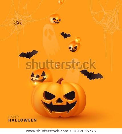 Halloween vásár pókháló terv éjszaka pók Stock fotó © SArts