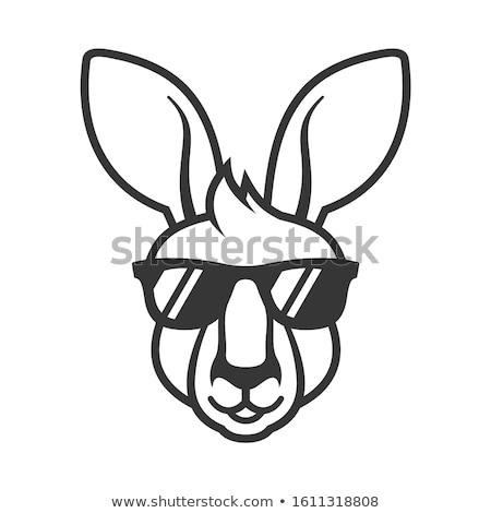 kangaroo head mascot stock photo © patrimonio