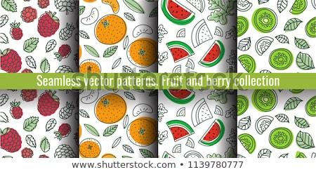Jasne wzór plastry arbuz bezszwowy wektora Zdjęcia stock © ExpressVectors
