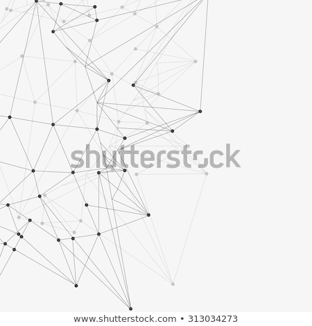 abstract low poly lines mesh on white background Stock photo © SArts