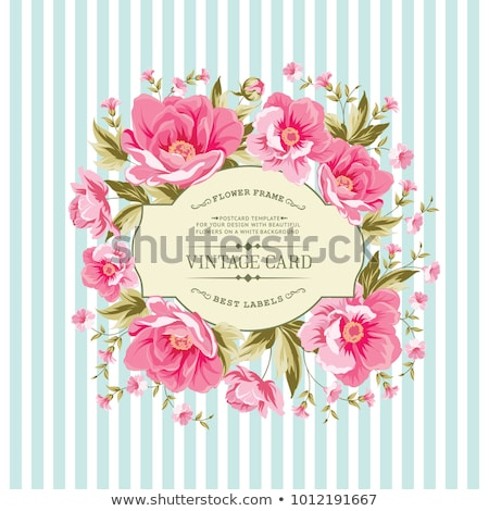 colorful peony flowers watercolor bouquet vector floral decor invitation wedding ceremony events stock photo © frimufilms