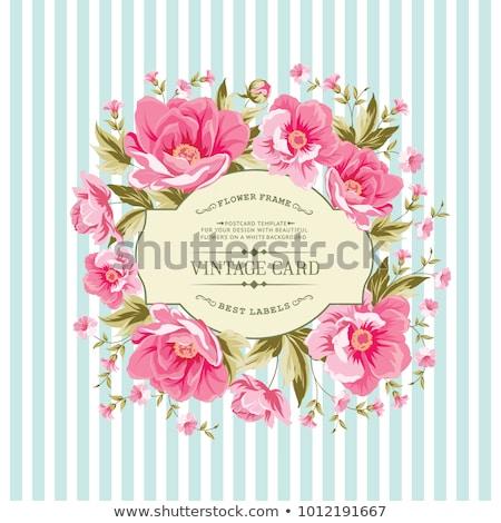 Colorato fiori acquerello bouquet vettore floreale Foto d'archivio © frimufilms