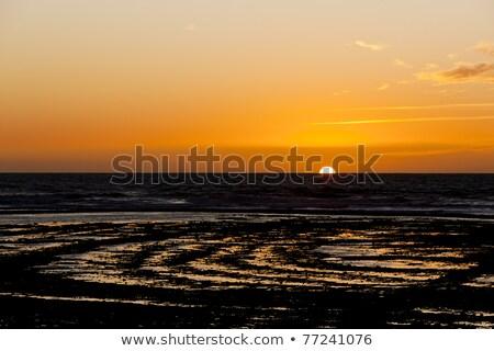sunset at coast of Oleron Island, Poitou-Charentes, France Stock photo © phbcz