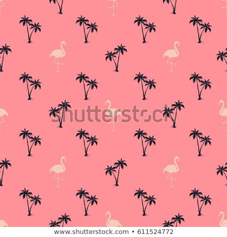 Tropische landschap flamingo palmen zon tropen Stockfoto © barsrsind