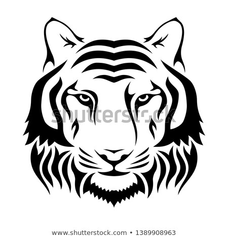Muzzle of a tiger isolated on wgite background. Tiger's head sil Stock photo © ColorHaze