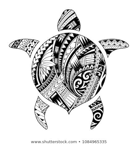 Schildpad witte Tribal ruimte Blauw Stockfoto © fresh_7266481