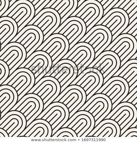 Vektör ortak merkezli circles geometrik çizgili Stok fotoğraf © samolevsky