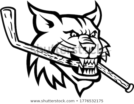 Bobcat Biting Ice Hockey Stick Mascot Black and White Stock photo © patrimonio