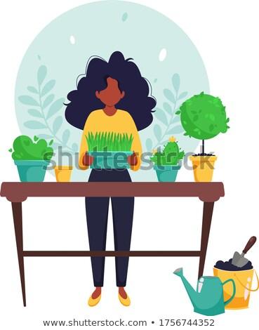 Jardinage femme pot à fleurs maison hobby vecteur Photo stock © robuart