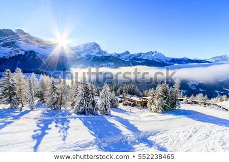 vallée · alpes · Suisse · ciel · nuages · forêt - photo stock © elenarts