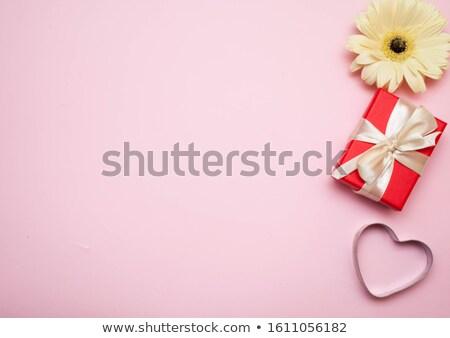 красивой розовый белый роса природы Daisy Сток-фото © posterize