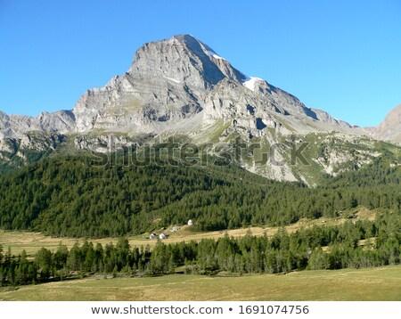 итальянский природного парка природы горные зеленый Сток-фото © rmarinello