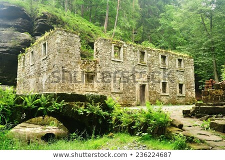 old dolsky mill with kamenice river stock photo © ondrej83