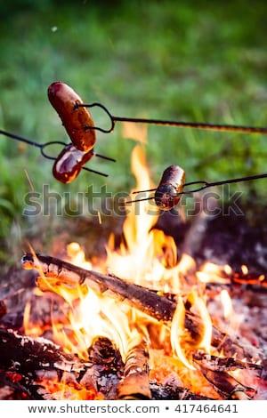 Sosis kamp ateşi Alevler ahşap doğa Stok fotoğraf © dinozzaver
