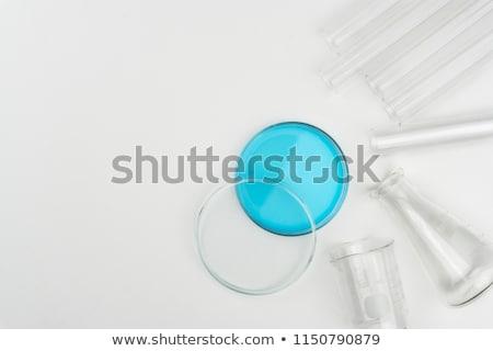 Csoport laboratórium folyadék asztal technológia üveg Stock fotó © HASLOO