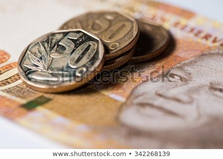 Vinte dinheiro ouro dólar africano Foto stock © michaklootwijk