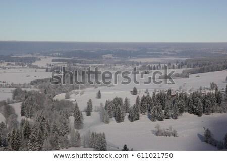 Winter field. View from above. Stock photo © Leonardi