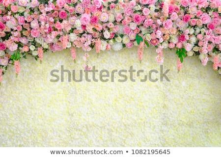 Gelin duvar güzel poz kadın Stok fotoğraf © fotorobs