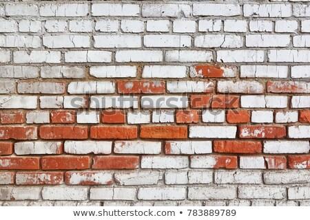 Rustic Brickwork Stock photo © stevanovicigor