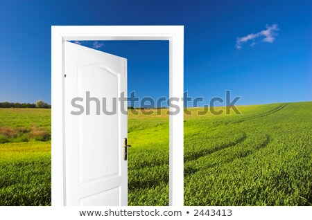 Door to field with blue sky. Easy for editing. Stock photo © vapi