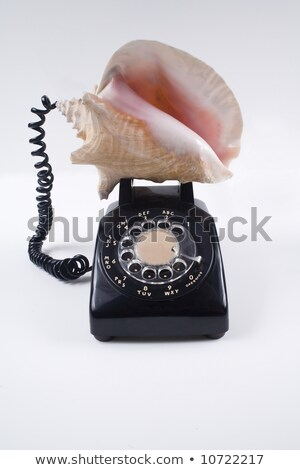 Conch shell phone Stock photo © MilanMarkovic78