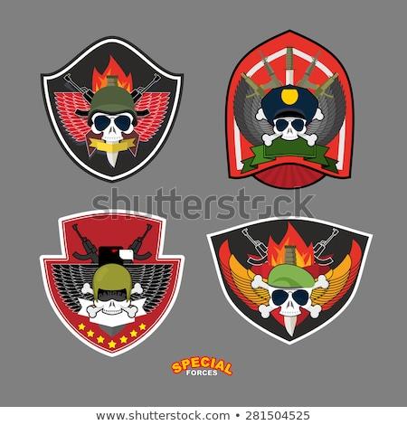 Stockfoto: Militaire · embleem · schedel · wapen · vleugels · schild