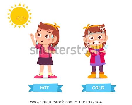 Naprzeciwko słowa zimno hot ilustracja żywności Zdjęcia stock © bluering