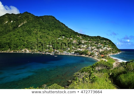 Rainforest wyspa Dominika Błękitne niebo Zdjęcia stock © meinzahn