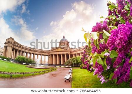 tavasz · Oroszország · gyönyörű · rakpart · korai · napos - stock fotó © Estea