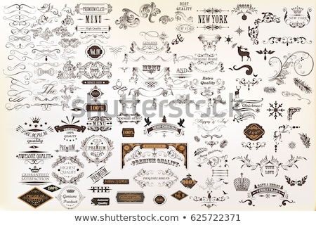 Calligraphic design elements in vintage style - vector set Stock photo © blue-pen